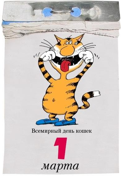 1-Marta Всемирный день кошек